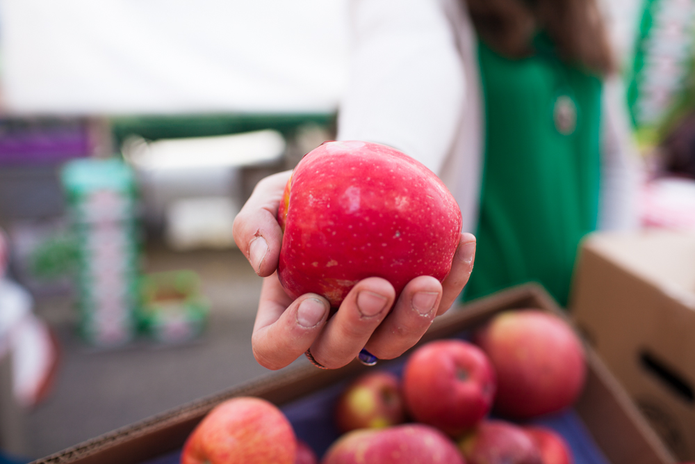 Ballard-Farmers-Market-Apples