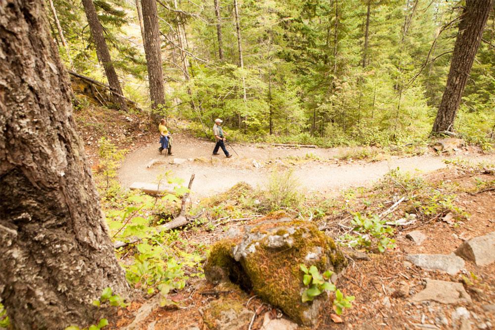 Marquam Nature Park Loop