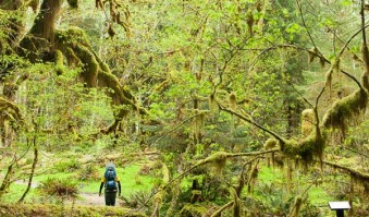 What's Your Northwest Hiking Personality? Quiz