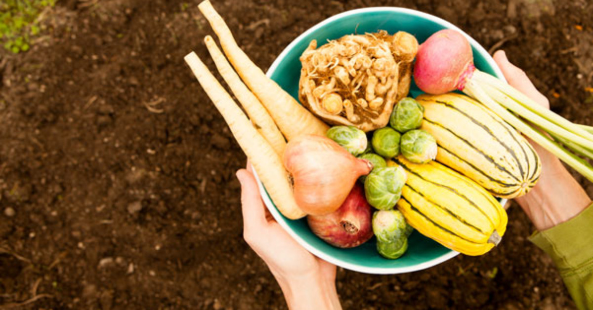 The ABCs of Northwest Fall Produce